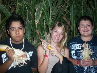 Corn maze 6