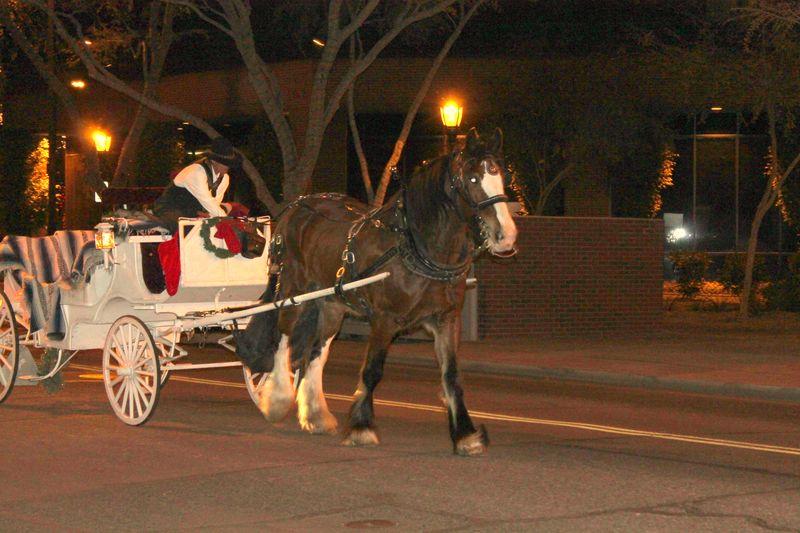 Glendale Glitters horse