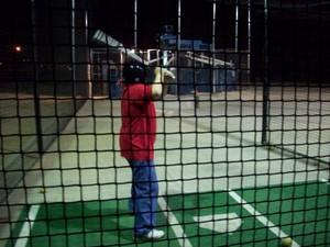 Bat_cage_1